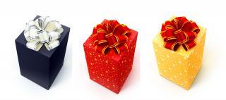Vánoce přicházejí, a spolu s nimi možnost jedinečných dárků